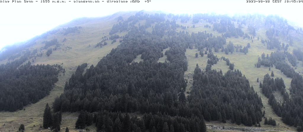 PianSegn Webcam NORD